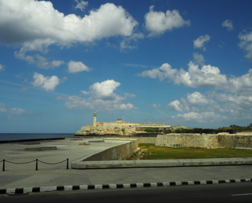oncgnostics in Kuba 2020
