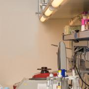 Theresa Erler im Labor der oncgnostics GmbH